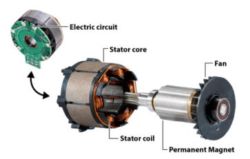 Cross-section of a Makita brushless motor